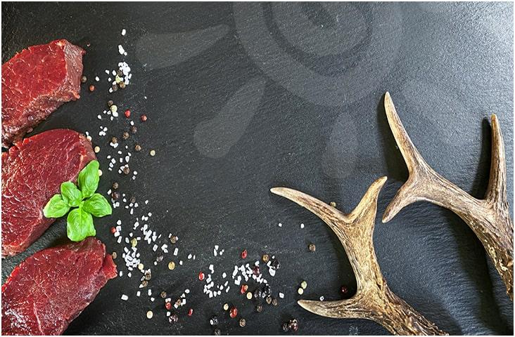 Restaurant Gastro Programm Wildwochen